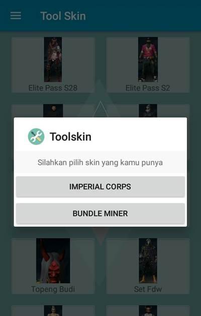 skin tool application